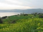 ガリラヤ湖 山上の説教の丘より